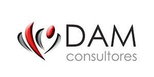 dam, consultores
